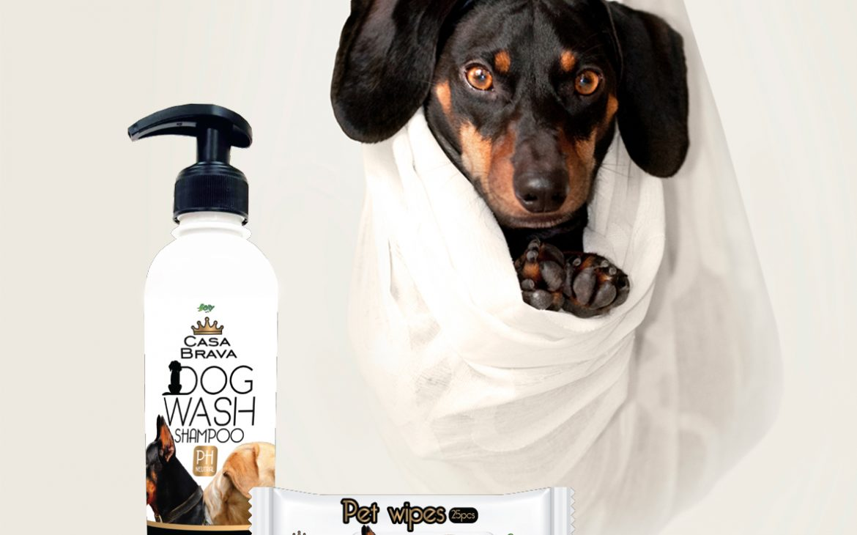 PET shampoo & Pet wetwipes